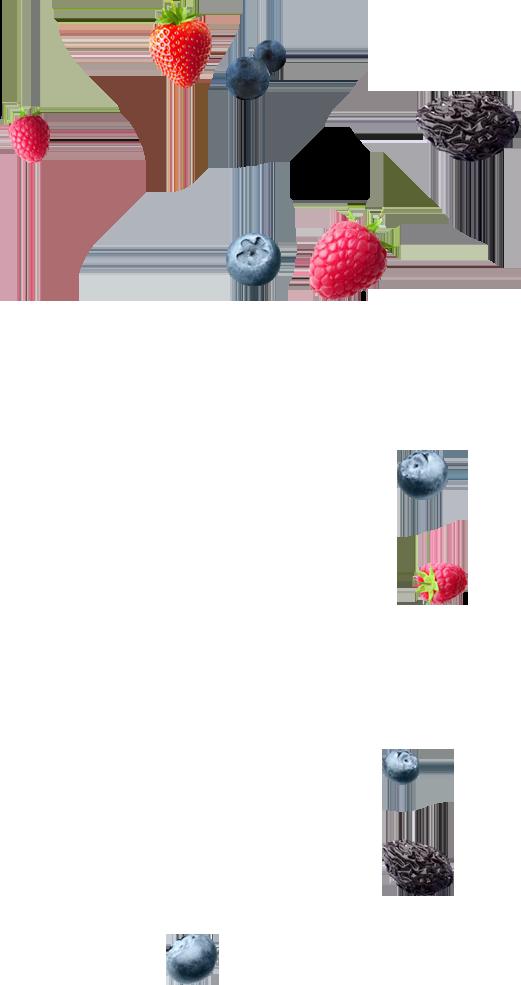 frutas skils